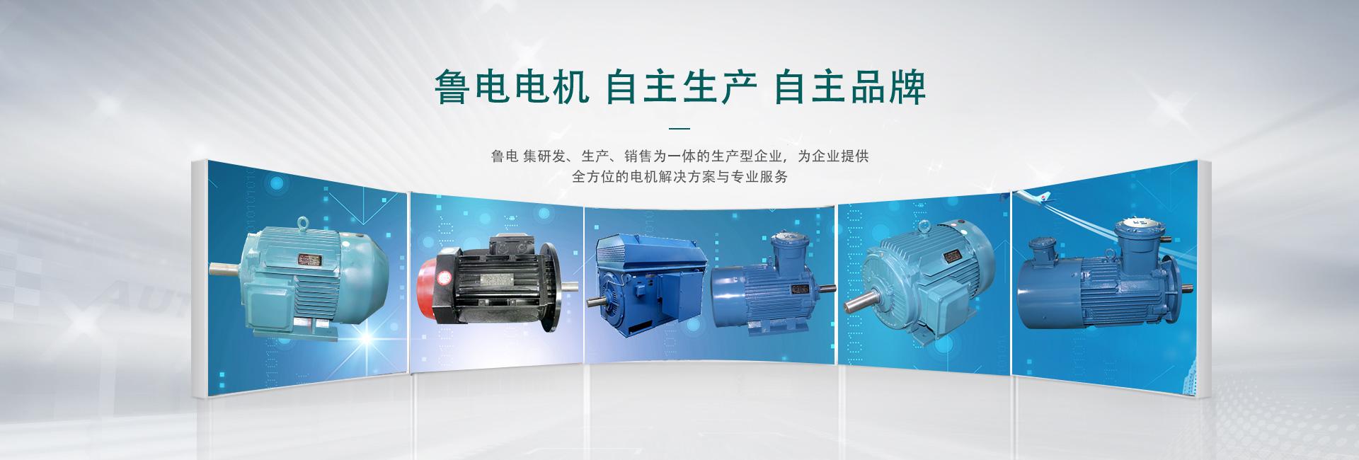 高压电机维修流程及标准