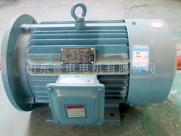 YE2三相异步电动机