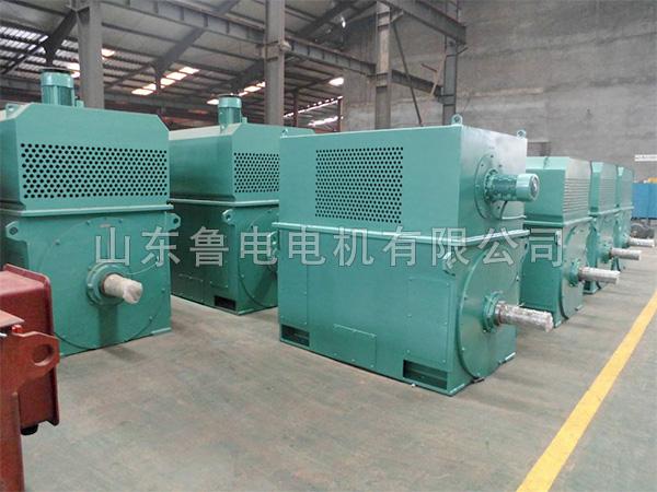 大型高压电机