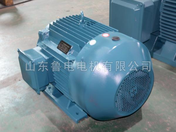 YE4三相异步电机