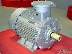 对高压电机的修理和维护注意事项
