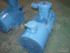 电机在使用的过程中要对其进行合理保养