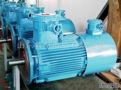 防爆电机绝缘处理的重要性和组成部分