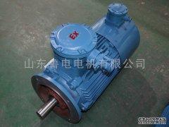 高压电机维修中的电机保养